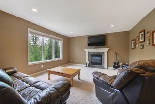 Photo 16: 14 DANFIELD Place: Spruce Grove House for sale : MLS®# E4168387