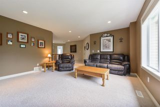 Photo 17: 14 DANFIELD Place: Spruce Grove House for sale : MLS®# E4168387