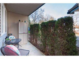 """Photo 14: 116 31771 PEARDONVILLE Road in Abbotsford: Abbotsford West Condo for sale in """"Breckenridge Estates"""" : MLS®# R2423655"""