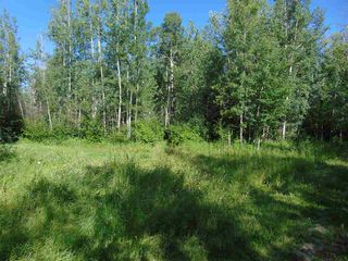 Photo 6: 48115 RGE RD 275: Rural Leduc County Rural Land/Vacant Lot for sale : MLS®# E4195927