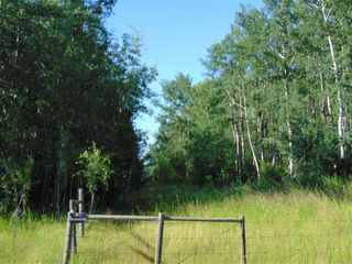 Photo 17: 48115 RGE RD 275: Rural Leduc County Rural Land/Vacant Lot for sale : MLS®# E4195927