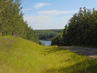 Photo 3: 48115 RGE RD 275: Rural Leduc County Rural Land/Vacant Lot for sale : MLS®# E4195927
