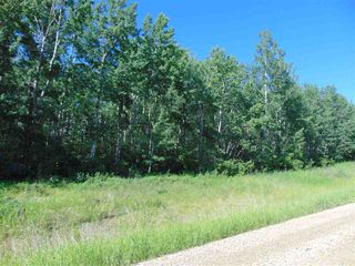 Photo 14: 48115 RGE RD 275: Rural Leduc County Rural Land/Vacant Lot for sale : MLS®# E4195927