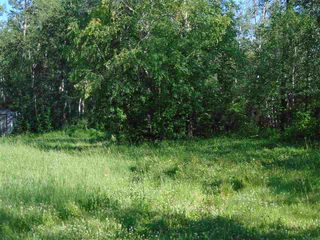 Photo 9: 48115 RGE RD 275: Rural Leduc County Rural Land/Vacant Lot for sale : MLS®# E4195927
