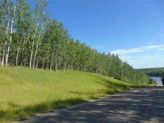 Photo 4: 48115 RGE RD 275: Rural Leduc County Rural Land/Vacant Lot for sale : MLS®# E4195927