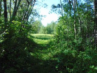 Photo 10: 48115 RGE RD 275: Rural Leduc County Rural Land/Vacant Lot for sale : MLS®# E4195927