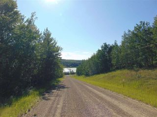 Photo 16: 48115 RGE RD 275: Rural Leduc County Rural Land/Vacant Lot for sale : MLS®# E4195927
