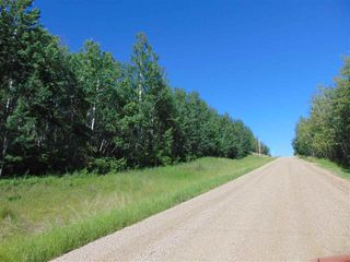 Photo 15: 48115 RGE RD 275: Rural Leduc County Rural Land/Vacant Lot for sale : MLS®# E4195927