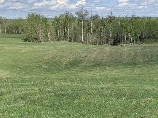 Photo 9: 53000 Range Road 73: Rural Parkland County Rural Land/Vacant Lot for sale : MLS®# E4202764