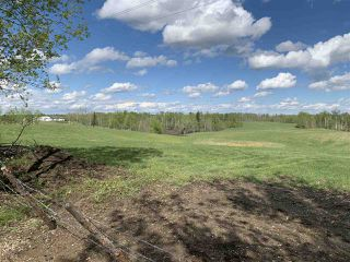 Photo 11: 53000 Range Road 73: Rural Parkland County Rural Land/Vacant Lot for sale : MLS®# E4202764