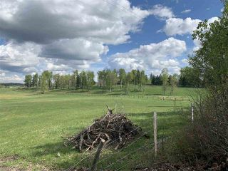 Photo 3: 53000 Range Road 73: Rural Parkland County Rural Land/Vacant Lot for sale : MLS®# E4202764