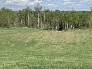 Photo 7: 53000 Range Road 73: Rural Parkland County Rural Land/Vacant Lot for sale : MLS®# E4202764