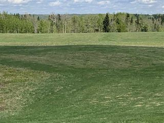 Photo 6: 53000 Range Road 73: Rural Parkland County Rural Land/Vacant Lot for sale : MLS®# E4202764