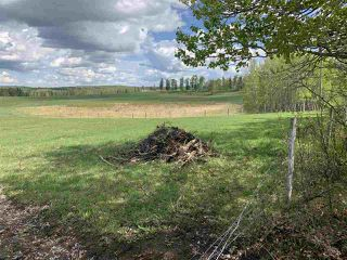 Photo 12: 53000 Range Road 73: Rural Parkland County Rural Land/Vacant Lot for sale : MLS®# E4202764