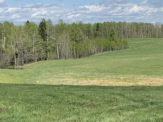 Photo 10: 53000 Range Road 73: Rural Parkland County Rural Land/Vacant Lot for sale : MLS®# E4202764