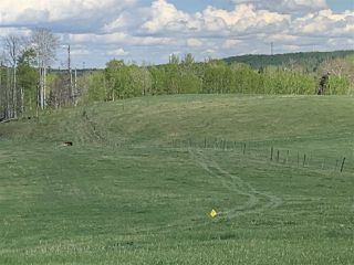 Photo 8: 53000 Range Road 73: Rural Parkland County Rural Land/Vacant Lot for sale : MLS®# E4202764
