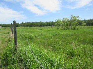 Photo 44: 101 2529 Sec Hwy 651: Rural Barrhead County House for sale : MLS®# E4204005