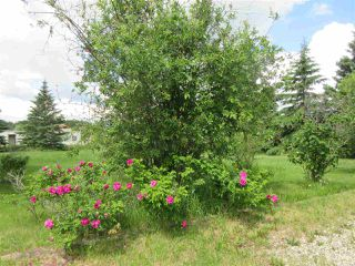 Photo 28: 101 2529 Sec Hwy 651: Rural Barrhead County House for sale : MLS®# E4204005