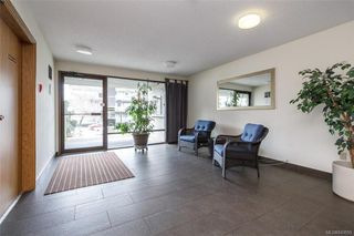 Photo 6: 413 3255 Glasgow Ave in Saanich: SE Quadra Condo for sale (Saanich East)  : MLS®# 843059