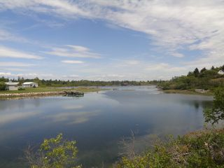 Photo 1: Lot Schooner Cove Road in Stonehurst: 405-Lunenburg County Vacant Land for sale (South Shore)  : MLS®# 202014566
