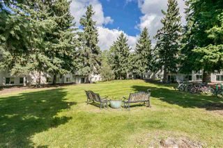 Photo 9: 217 5730 RIVERBEND Road in Edmonton: Zone 14 Condo for sale : MLS®# E4213990