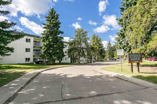 Photo 28: 217 5730 RIVERBEND Road in Edmonton: Zone 14 Condo for sale : MLS®# E4213990