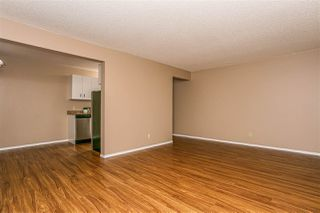 Photo 14: 217 5730 RIVERBEND Road in Edmonton: Zone 14 Condo for sale : MLS®# E4213990