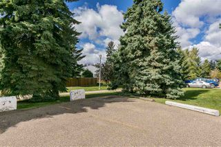 Photo 27: 217 5730 RIVERBEND Road in Edmonton: Zone 14 Condo for sale : MLS®# E4213990