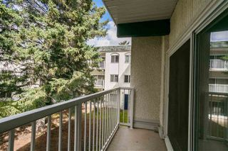 Photo 8: 217 5730 RIVERBEND Road in Edmonton: Zone 14 Condo for sale : MLS®# E4213990