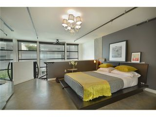 """Photo 3: 309 428 W 8TH Avenue in Vancouver: Mount Pleasant VW Condo for sale in """"XL LOFTS"""" (Vancouver West)  : MLS®# V910396"""