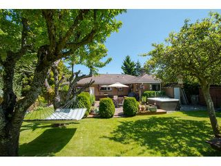 Photo 19: 1361 STAYTE Street: White Rock House for sale (South Surrey White Rock)  : MLS®# F1431789