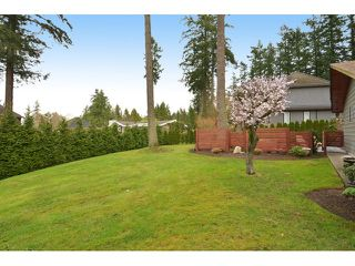 """Photo 3: 2624 140 Street in Surrey: Sunnyside Park Surrey House for sale in """"Elgin / Chantrell"""" (South Surrey White Rock)  : MLS®# F1435238"""
