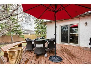 Photo 4:  in WINNIPEG: Charleswood Residential for sale (South Winnipeg)  : MLS®# 1509683