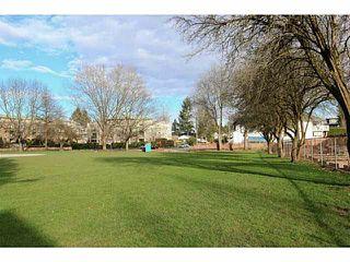 Photo 20: 225 - 2109 Rowland St, Port Coquitlam - Condo for Sale, V1134174