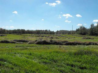 Photo 7: RR61 Twp Rd 562: Rural St. Paul County Rural Land/Vacant Lot for sale : MLS®# E4056770