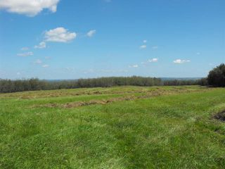 Photo 4: RR61 Twp Rd 562: Rural St. Paul County Rural Land/Vacant Lot for sale : MLS®# E4056770