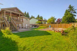 Photo 18: 12058 210 Street in Maple Ridge: Northwest Maple Ridge House for sale : MLS®# R2179738