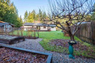 Photo 11: : Roberts Creek House for sale (Sunshine Coast)  : MLS®# R2230741