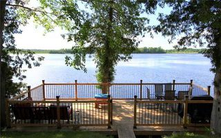 Photo 4: 41 North Taylor Road in Kawartha Lakes: Rural Eldon House (Bungalow) for sale : MLS®# X4057617