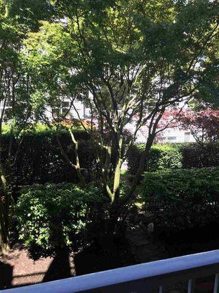 """Photo 9: 203 12639 NO. 2 Road in Richmond: Steveston South Condo for sale in """"NAUTICA SOUTH"""" : MLS®# R2288265"""
