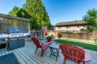 "Photo 37: 2426 WAYBURNE Crescent in Langley: Willoughby Heights House for sale in ""Langley Meadows"" : MLS®# R2288999"