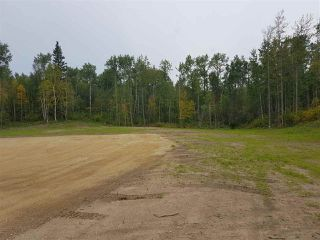 Photo 17: 6 54104 RANGE ROAD 35: Rural Lac Ste. Anne County House for sale : MLS®# E4142547