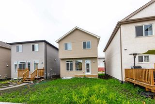 Photo 15: 6315 170 Avenue in Edmonton: Zone 03 House for sale : MLS®# E4143190
