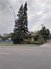 Photo 3: 2620 CENTRE Street NE in Calgary: Tuxedo Park Land for sale : MLS®# C4226732