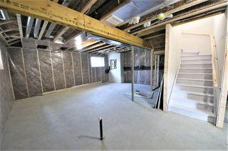 Photo 24: 11114 51 Street in Edmonton: Zone 09 House for sale : MLS®# E4146993
