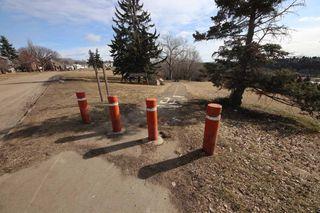 Photo 26: 11114 51 Street in Edmonton: Zone 09 House for sale : MLS®# E4146993