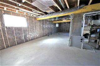 Photo 23: 11114 51 Street in Edmonton: Zone 09 House for sale : MLS®# E4146993