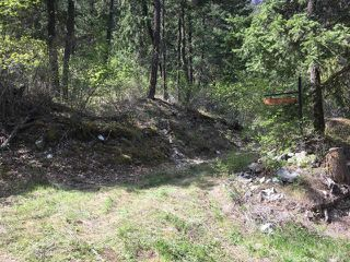 Photo 9: LOT A TEXAS CREEK ROAD in : Lillooet Lots/Acreage for sale (South West)  : MLS®# 150947
