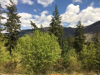 Photo 7: LOT A TEXAS CREEK ROAD in : Lillooet Lots/Acreage for sale (South West)  : MLS®# 150947