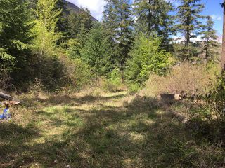 Photo 8: LOT A TEXAS CREEK ROAD in : Lillooet Lots/Acreage for sale (South West)  : MLS®# 150947